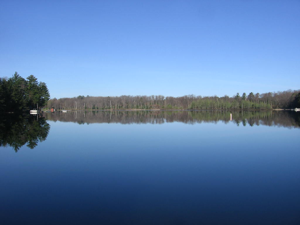 Lake, Lyn Cote