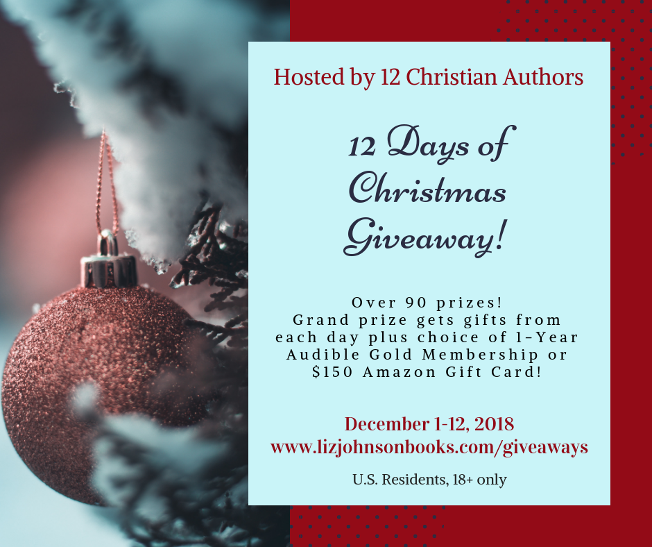 Day 2 Of 12 Days Of Christmas Giveaway!