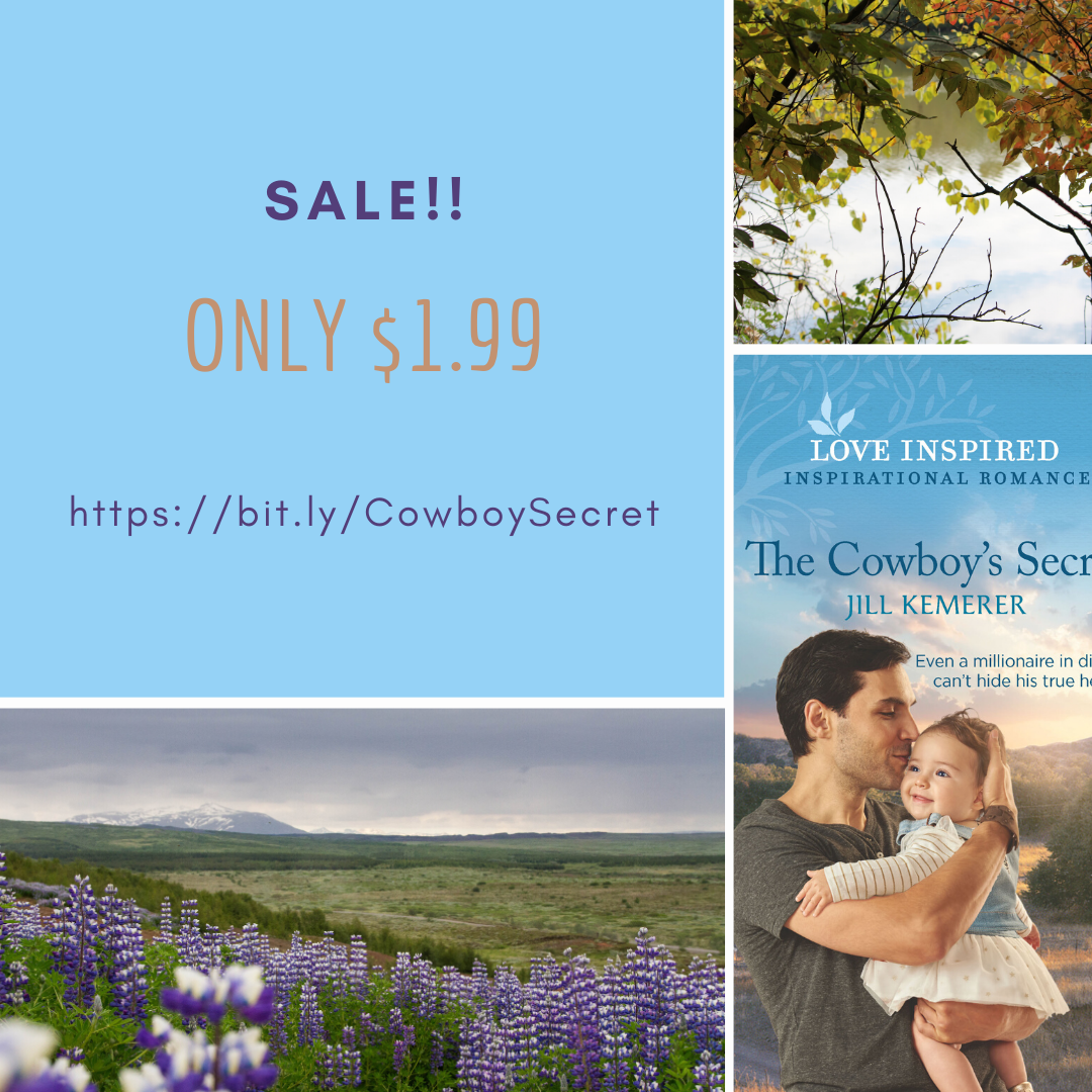$1.99 Sale! The Cowboy's Secret