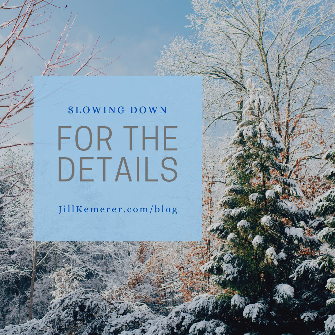 Slowing Down for the Details, Jill Kemerer